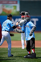 Erie SeaWolves mascot SeaWolf high fives Chad Sedio (27) during introductions before an Eastern League game against the Akron RubberDucks on June 2, 2019 at UPMC Park in Erie, Pennsylvania.  Erie defeated Akron 8-5 in eleven innings in the second game of a doubleheader.  (Mike Janes/Four Seam Images)