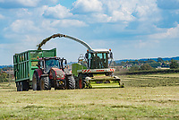Forage harvester working, Hatfield, Worcestershire.