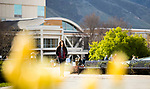 1704-10 GCS Spring 0025<br /> <br /> 1704-10 GCS Spring<br /> <br /> April 6, 2017<br /> <br /> Photography by Nate Edwards/BYU<br /> <br /> &copy; BYU PHOTO 2016<br /> All Rights Reserved<br /> photo@byu.edu  (801)422-7322