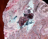 CUPRITE: RED CUPROUS OXIDE CRYSTALS ON LIMONITE Cu2O<br />