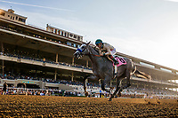 DEL MAR, CA - SEPTEMBER 01: Magic on Tap[ with Draymen Van Dyke wins a maiden race at Del Mar on September 1, 2018 in Del Mar, California.(Photo by Alex Evers/Eclipse Sportswire)
