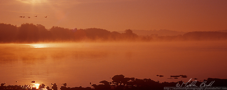 early morning mist lingers on Chew Vally Lake, Somerset