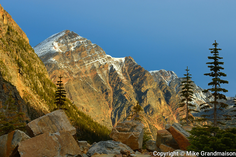 ALpine in the Rocky Mountains at Edith Cavell<br /> Jasper National Park<br /> Alberta<br /> Canada