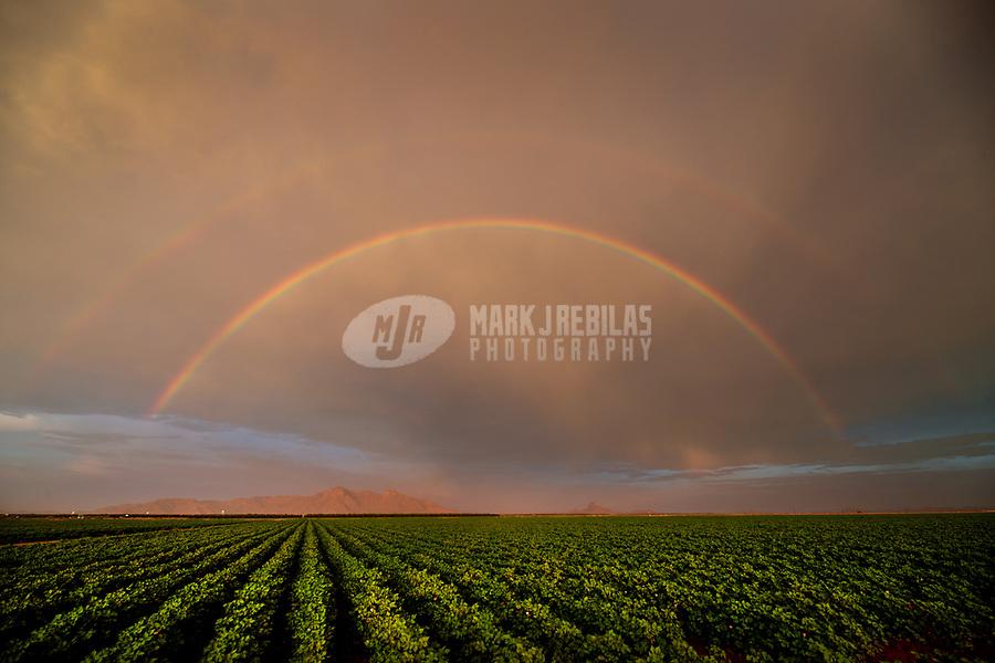 Rainbow, storm, storm chasing, storm chaser, Arizona, weather, clouds, desert, mountains, rain, monsoon, double rainbow, farm, field, crops, farming
