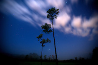 Night time images of the moon, stars and clouds in Oakleaf Plantation and Cecil Field in Jacksonville, Fl. Sunday December 14, 2011. (Rick Wilson/Rick Wilson Photography)