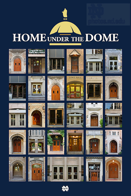 Home Under the Dome Poster