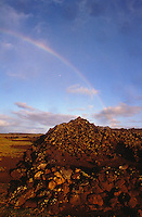 Mamaki Heiau on the Island of Lanai
