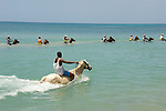 Horse back riding in the Caribbean at Chukka Blue in Montego Bay, Jamaica