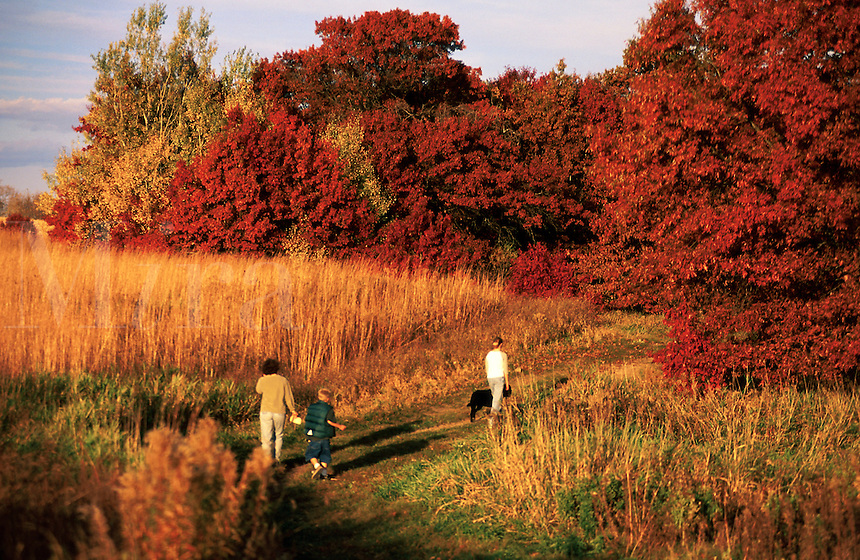 Rural landscape of a family walking amongst fall foliage.