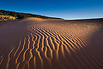 Wind patterns in sand at sunset, Coral Pink Sand Dunes State Park, near Kanab, Kane County, Southern Utah