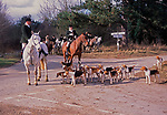 A795K3 Fox hunting with master of the hunt on horse and hounds around Butley Suffolk England