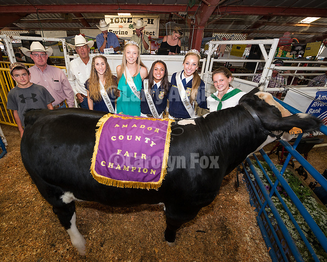 4th day of the 76th Amador County Fair, Plymouth, Calif.<br /> <br /> 50th Annual Jr. Livestock Auction