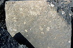 Ancient Greek lettering on rock at Tlos, Turkey