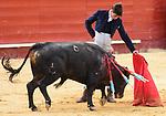 Feria de Julio de Valencia.<br /> I Certamen de Escuelas Taurinas.<br /> Clases Practicas.<br /> <br /> Novillos de La Palmosilla.<br /> <br /> &quot;El Rafi&quot; - E.T. Nimes.<br /> Francisco de Manuel - E.T. Colmenar Viejo.<br /> Miguel Senent &quot;Miguelito&quot; - E.T. Valencia.<br /> Juan Diego - E.T. Almeria.<br /> Borja Collado - E.T. Valencia.<br /> Joao D'Alva - E.T. Vilafranca de Xira.<br /> <br /> 15 de julio de 2017.<br /> <br /> Coso de la Calle Xativa.<br /> Valencia, Valencia - Espa&ntilde;a.