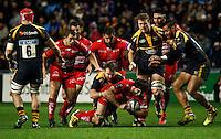 151122 Wasps v Toulon
