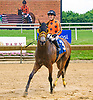 Hot and Heavy winning at Delaware Park on 6/19/17