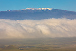 View Of Mauna Kea Along Hawi To Waimea Route