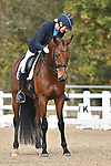 Stapleford Abbotts. United Kingdom. 08 November 2019. Class 3. British Dressage. Brook Farm training centre. Stapleford Abbotts. Essex. United Kingdom. Credit Garry Bowden/Sport in Pictures.~ 08/11/2019.  MANDATORY Credit Garry Bowden/SIP photo agency - NO UNAUTHORISED USE - 07837 394578