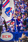 19 October 2014: The Buffalo Bills flag is raced across the end zone after a scoring play in the second quarter against the Minnesota Vikings at Ralph Wilson Stadium in Orchard Park, NY. The Bills defeated the Vikings 17-16 in a dramatic, last minute, comeback touchdown drive. Mandatory Credit: Ed Wolfstein Photo *** RAW (NEF) Image File Available ***