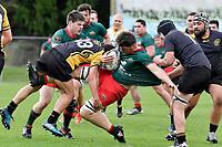 20170916 Rugby - Wellington Maori Development v Wairarapa Bush B