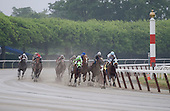 Johannesburg Smile (green colors) rallies on far turn in 4th (2).