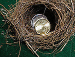 Nest egg savings<br />