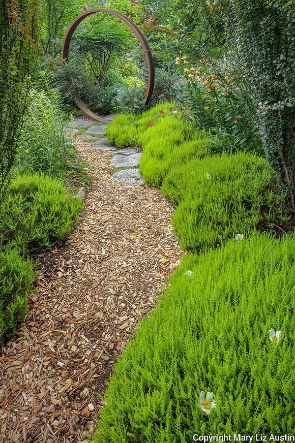 Vashon-Maury Island, WA: Pathway to circular gate edged by heathers and barberries.