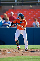 Frederick Keys second baseman Preston Palmeiro (7) squares around to bunt during the first game of a doubleheader against the Lynchburg Hillcats on June 12, 2018 at Nymeo Field at Harry Grove Stadium in Frederick, Maryland.  Frederick defeated Lynchburg 2-1.  (Mike Janes/Four Seam Images)