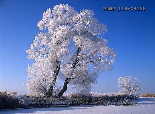 Marek, CHRISTMAS LANDSCAPES, WEIHNACHTEN WINTERLANDSCHAFTEN, NAVIDAD PAISAJES DE INVIERNO, photos+++++,PLMP118-04138,#xl#