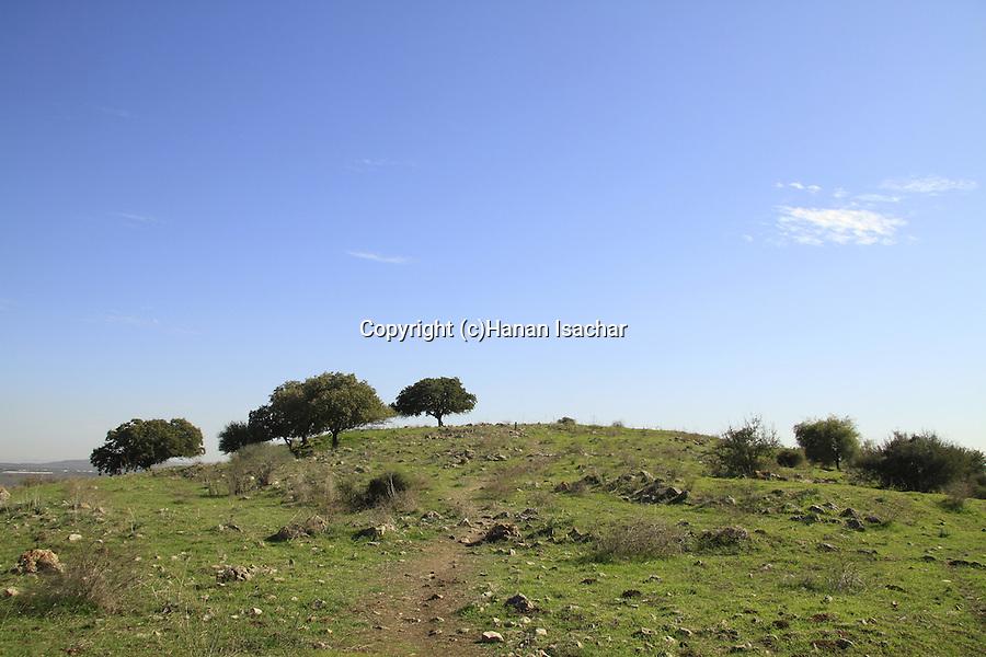 Israel, Lower Galilee, Tel Govel by Beth Keshet scenic road