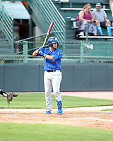 Andy Pages - 2019 Ogden Raptors (Bill Mitchell)