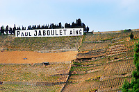 A sign with Paul Jaboulet Aine. The Hermitage vineyards on the hill behind the city Tain-l'Hermitage, on the steep sloping hill, stone terraced. Sometimes spelled Ermitage. Tain l'Hermitage, Drome, Drôme, France, Europe