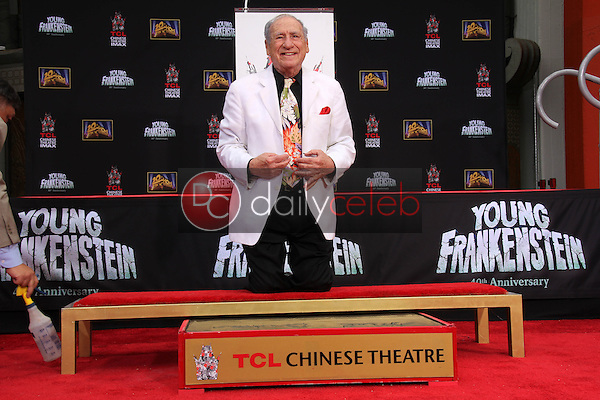 Mel Brooks<br /> Mel Brooks Hand and Footprint Ceremony, TCL Chinese Theater, Hollywood, CA 09-08-14<br /> David Edwards/DailyCeleb.com 818-249-4998