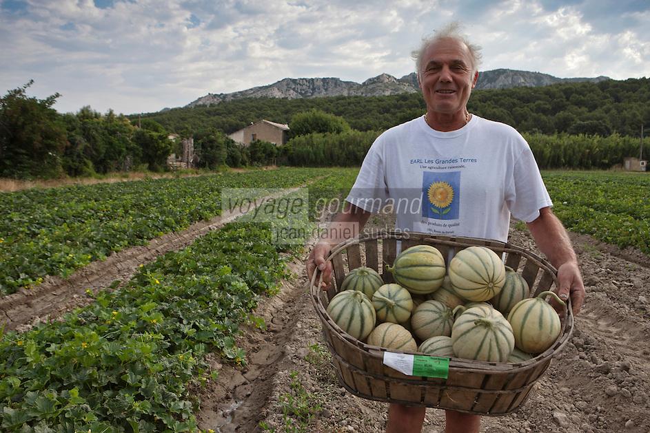 Europe/France/Provence-Alpes-Côte d'Azur/84/Vaucluse/Lubéron/Cavaillon/ Cheval-Blanc: Bernard Meyssard, producteurs de melons,dans sa melonnière [Autorisation : A12-3002]