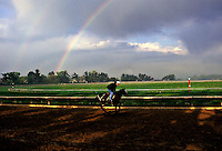 Rainbow during AM workout
