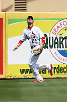 March 20, 2010:  Left Fielder Joe Mather (22) of the St. Louis Cardinals during a Spring Training game at the Roger Dean Stadium Complex in Jupiter, FL.  Photo By Mike Janes/Four Seam Images