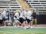 Towson, MD - May 6, 2017: Towson Tigers players storm the field after winning their third consecutive CAA Championship against UMASS 9-4 at Minnegan Field at Johnny Unitas Stadium  in Towson, MD. (Photo by Phillip Peters/Media Images International)