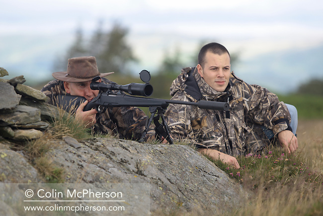 Gamekeeper Ian Banks, holding a rifle, and chef Warrick Dodds deer stalking on moorland at Crosthwaite on the Lancashire-Cumbria border, north west England. The gamekeeper supplied restaurants in the region with freshly-culled deer. The word Crosthwaite means a cross in a clearing-the spot was probably named after an ancient chapel or church, long since disappeared.