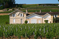 Chateau Pavie 1er premier first Grand Cru Classe and its vineyards Saint Emilion Bordeaux Gironde Aquitaine France