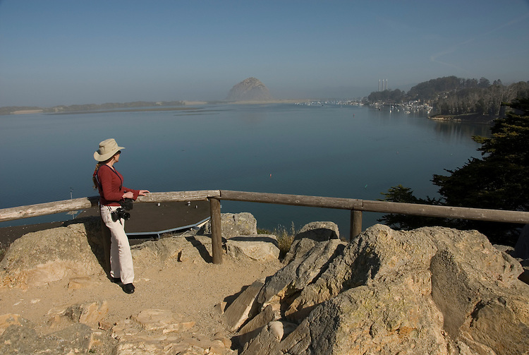 California, San Luis Obispo County: Morro Bay State Park, with Morro Rock, artists painting Morro Rock, rangers leading walks, and a heron rookery. Model released..Photo caluis167-70885 .Photo copyright Lee Foster, www.fostertravel.com, 510-549-2202, lee@fostertravel.com