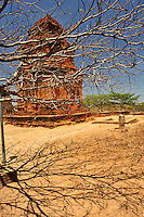 Thap Poshanu Cham Tower viewed through branches of a tree. The Tower is an ancient Hindu temple (circa 8th century) dedicated to the worshipping of Shiva. Mui Ne, Binh Thuan Province, Vietnam