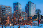 Christmas lights at dusk on Boston Common, Boston, MA, USA
