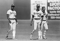 Chili Davis, Devon White, and Brian Downing of the California Angels during a 1988 spring training game in Palm Springs,California.(Larry Goren/Four Seam Images)