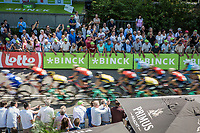 First passage peloton at the finish line.. 2 laps to go! <br /> <br /> Binckbank Tour 2017 (UCI World Tour)<br /> Stage 1: Breda (NL) > Venray (NL) 169,8km