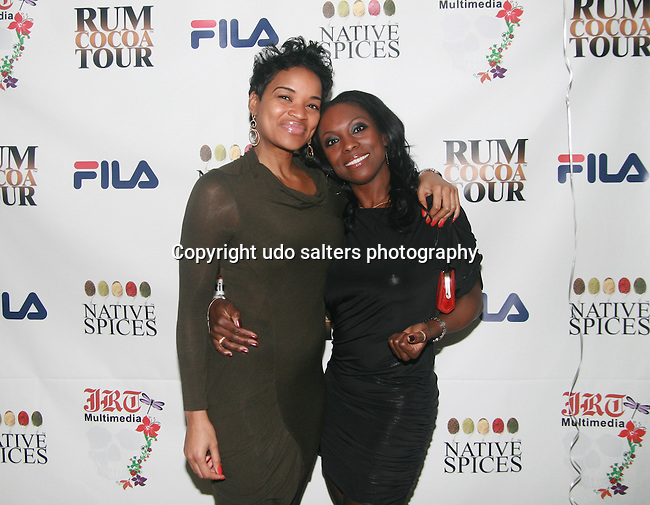 Michelle Bell and Cathy Sussman Attend Jocelyn Taylor's Birthday Celebration and Official Launch of JRT Multimedia, LLC (A Luxury Branding Company)at Nikki Beach Midtown, New York, 3/26/2011