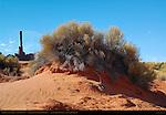 Totem Pole and Sand Dune, Sand Springs, Monument Valley Navajo Tribal Park, Navajo Nation Reservation, Utah/Arizona Border