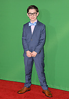 Owen Vaccaro at the premiere for &quot;Daddy's Home 2&quot; at the Regency Village Theatre, Westwood. Los Angeles, USA 05 November  2017<br /> Picture: Paul Smith/Featureflash/SilverHub 0208 004 5359 sales@silverhubmedia.com