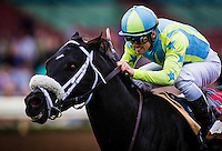 ARCADIA, CA - FEBRUARY 04: Isotherm #11, ridden by Flavien Prat wins the San Marcos Stakes at Santa Anita Park on February 4, 2017 in Arcadia, California. (Photo by Alex Evers/Eclipse Sportswire/Getty Images)