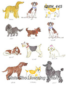 Kate, CUTE ANIMALS, LUSTIGE TIERE, ANIMALITOS DIVERTIDOS, paintings+++++Watercolour dogs,GBKM445,#ac#, EVERYDAY ,dogs,dog