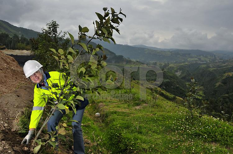 Reforestacion de una cantera cercana a Otavalo, Ecuador.